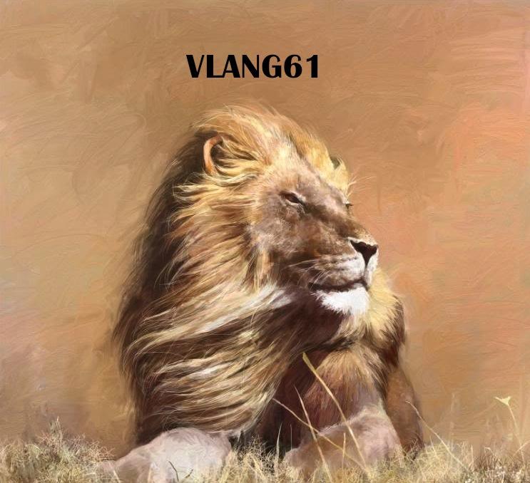 vlang61